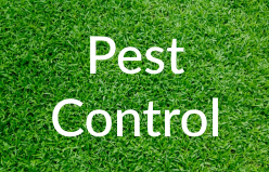 Markham-Grange-Garden-Cente-Garden-Pest-Control