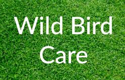 Markham-Grange-Garden-Cente-Garden-Wild-Bird-Care