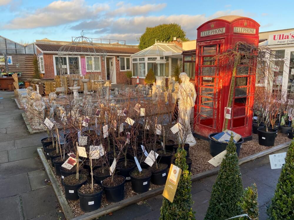 Markham Grange Garden Centre Gallery 5