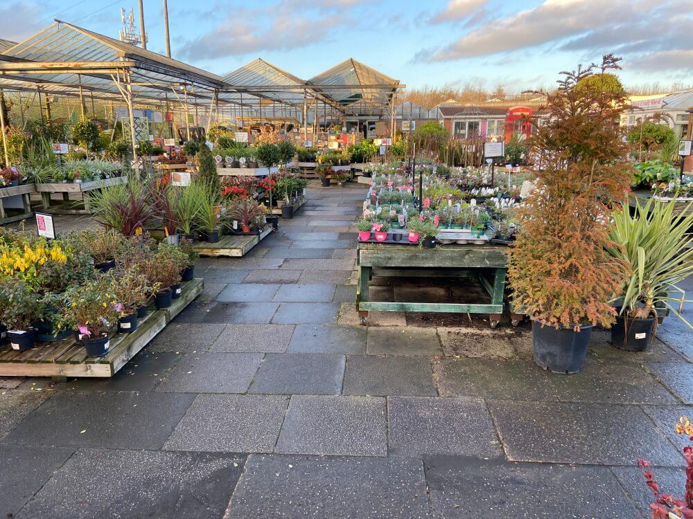 Markham Grange Garden Centre Gallery 8