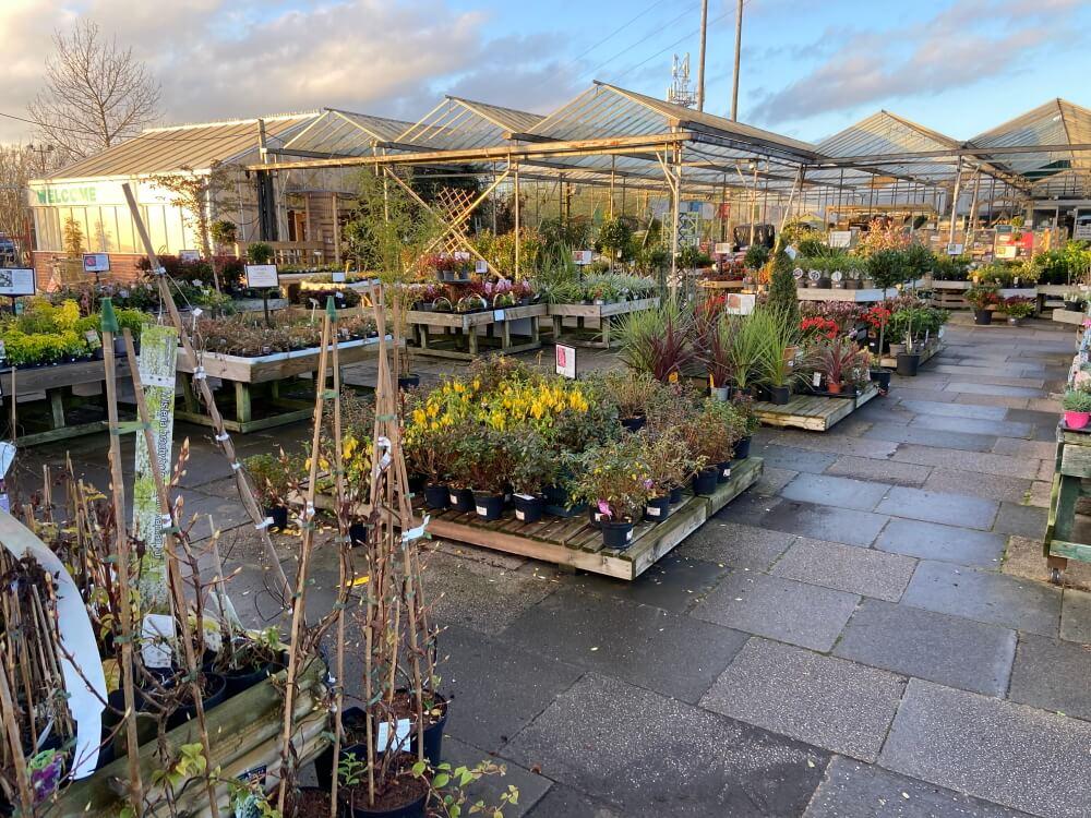 Markham Grange Garden Centre Gallery 9